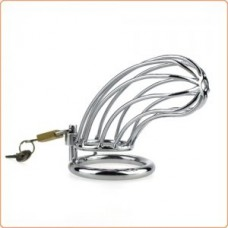Master Series 6 Bird Cage Chastity Device (50mm)