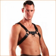 Leather Upper Body Male Harness